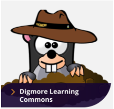 Digmore